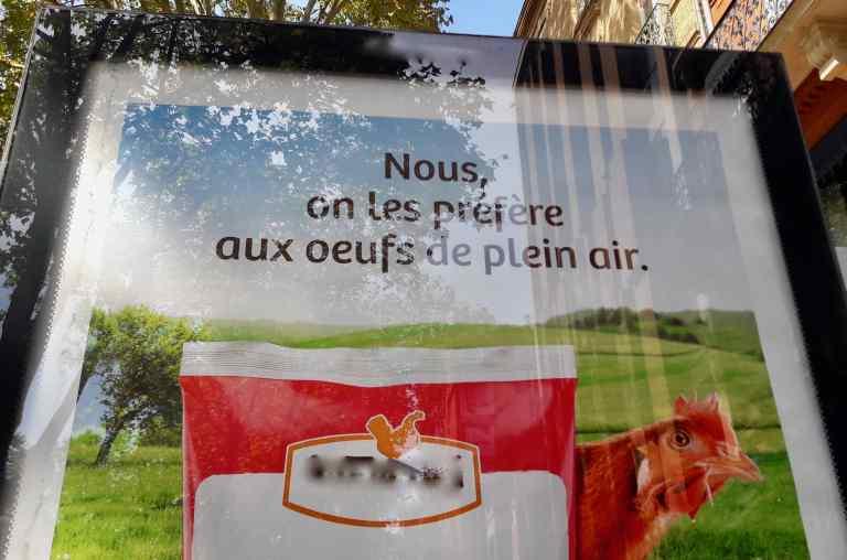affiche_oeufs_poules